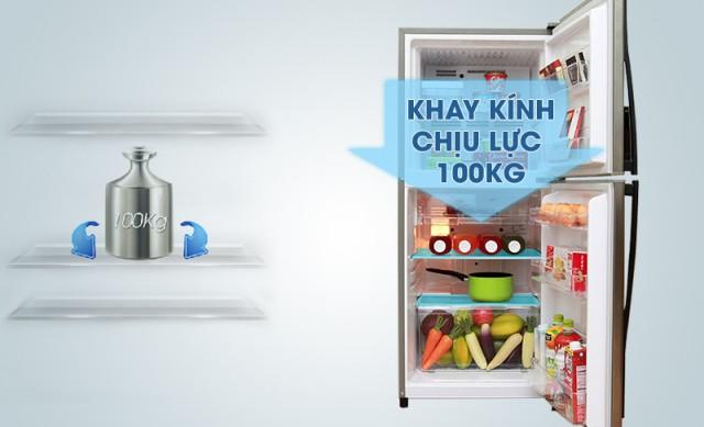 Tủ lạnh Aqua Inverter 252 lít AQR-IP255AN