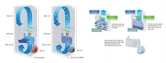 Tủ lạnh Hitachi R-SF48EMV 497 lít