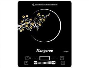 Bếp từ Kangaroo KG430I 2100W
