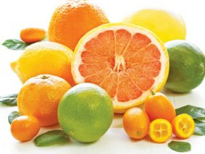 Các loại trái cây họ cam quýt