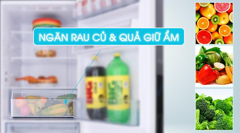 5 lý do nên mua tủ lạnh ngăn đá dưới Aqua 2019 5