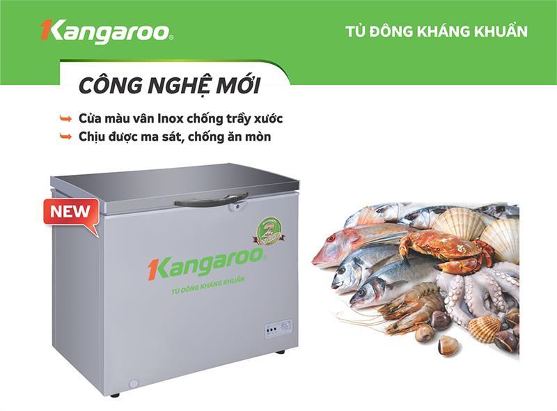 Tủ đông KANGAROO KG298VC1 298 Lít 1