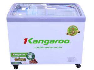 Tủ đông KANGAROO KG308C1 308 Lít 1