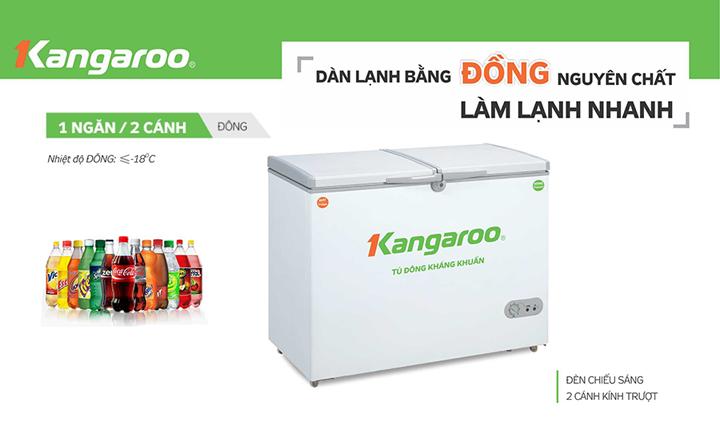 Tủ đông KANGAROO KG668C1 668 Lít 1