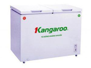 Tủ đông KANGAROO KG699C1 1