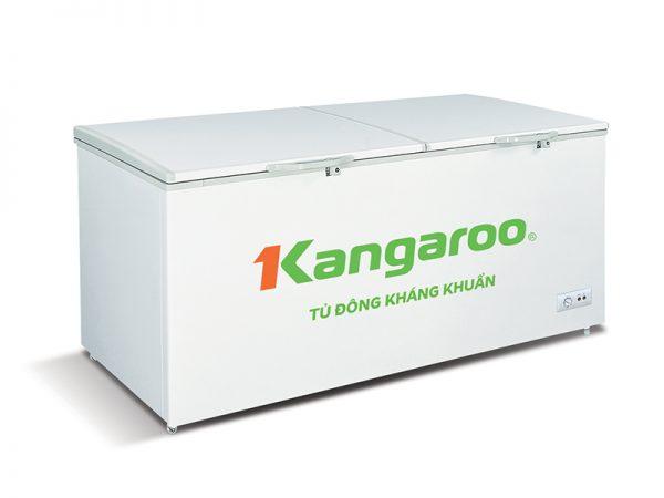 Tủ đông KANGAROO KG809C1 6