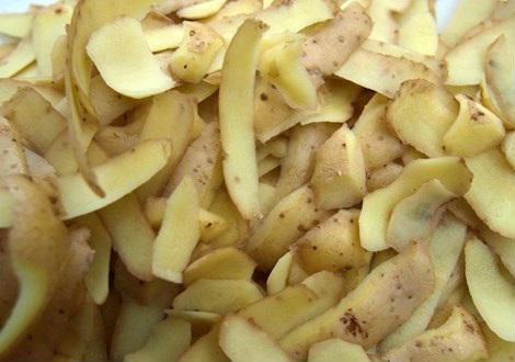 vỏ khoai tây