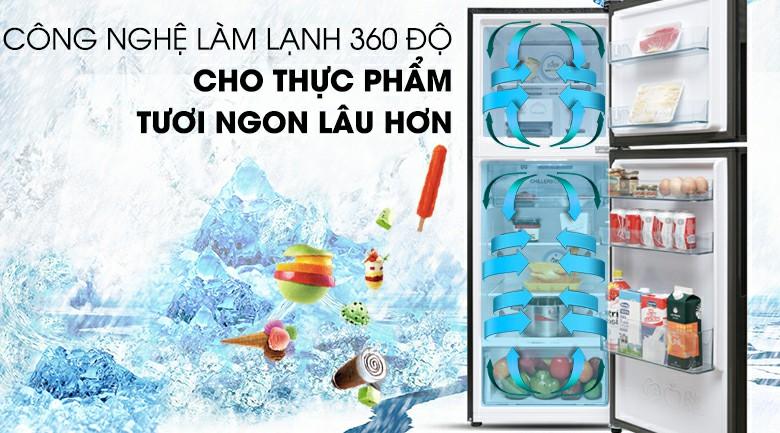 Tủ lạnh AQUA AQR-T249MA(SV) Inverter 235 lít 4