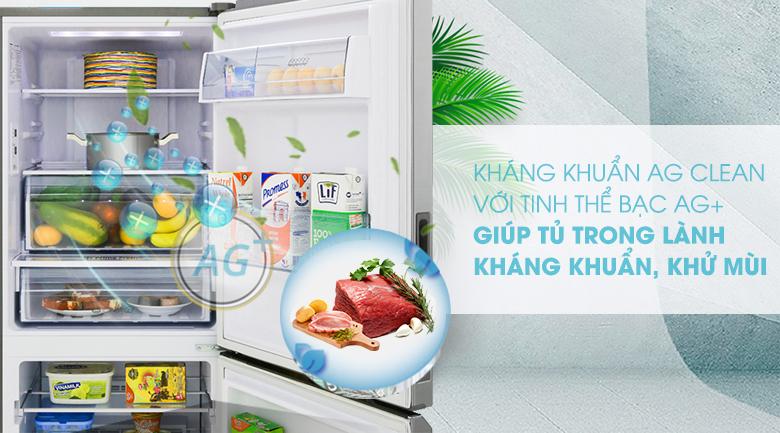 Tủ lạnh Panasonic Inverter 255 lít NR-BV280QSVN công nghệ kháng khuẩn