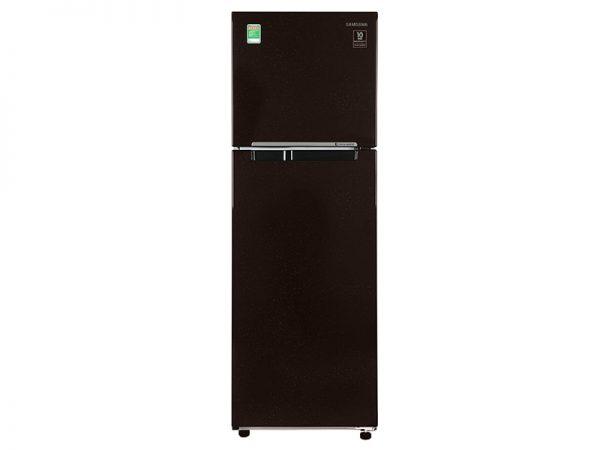 Tủ lạnh Samsung RT25M4032BY