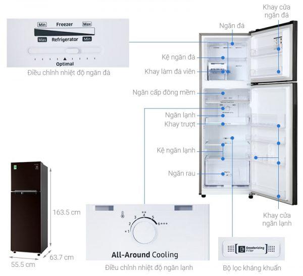 Tủ lạnh Samsung RT25M4032BY 5