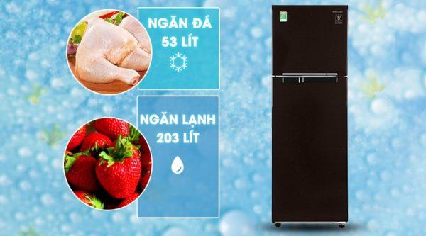 Tủ lạnh Samsung RT25M4032BY 6