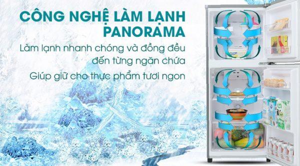 Tủ lạnh Panasonic NR-BA189PPVN Inverter 167 lít 9