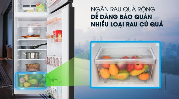 Tủ lạnh Toshiba GR-B31VU UKG Inverter 253 lít 11