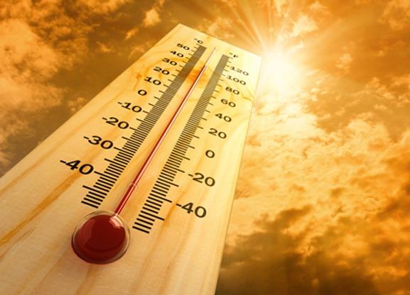 Tủ mát Sanaky Inverter 240 Lít VH- 308K3 nhiệt độ bảo quản