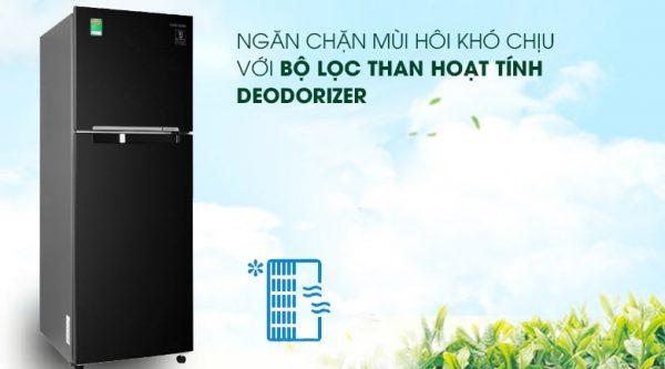 Tủ lạnh Samsung Inverter 236 lít RT22M4032BU 10